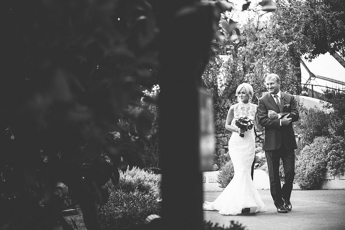 Eden-Project-Wedding-Photos (65)
